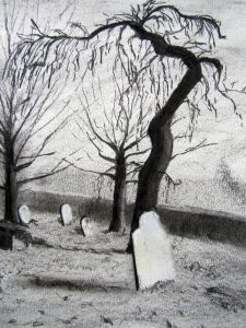 charcoal drawing of twisted tree.